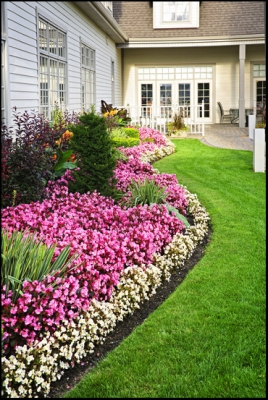 Beaver Landscaping & Gardening | Landscaping Services in Greater ...